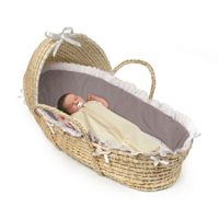 Ideal Moses Basket For Photo Shoot.